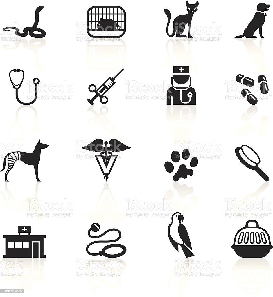 Black Symbols - Veterinary vector art illustration