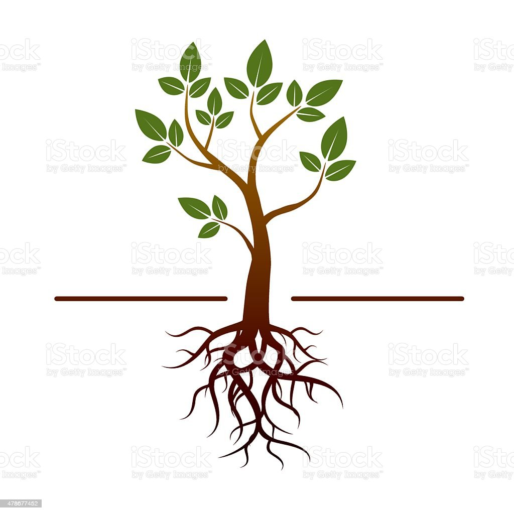 Black vector tree and green leafs and roots vector art illustration
