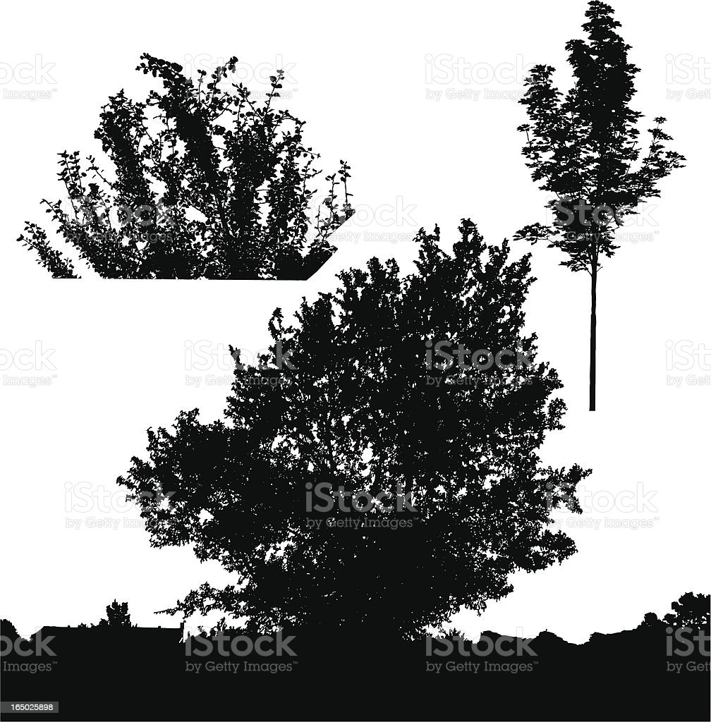 Black Vector Trees royalty-free stock vector art