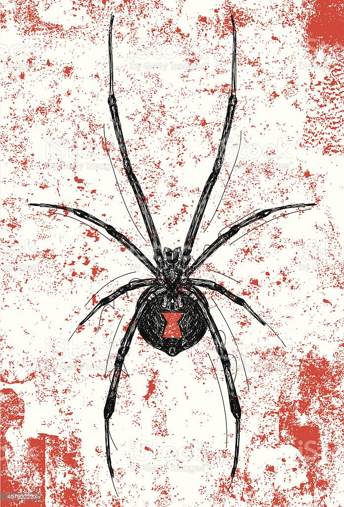 black widow background royalty-free stock vector art