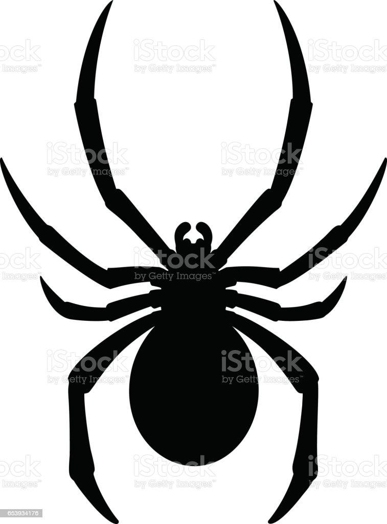 Black Widow Spider Clip Art, Vector Images & Illustrations - iStock