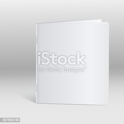 Blank Brochure Template Mockup Stock Vector Art   Istock