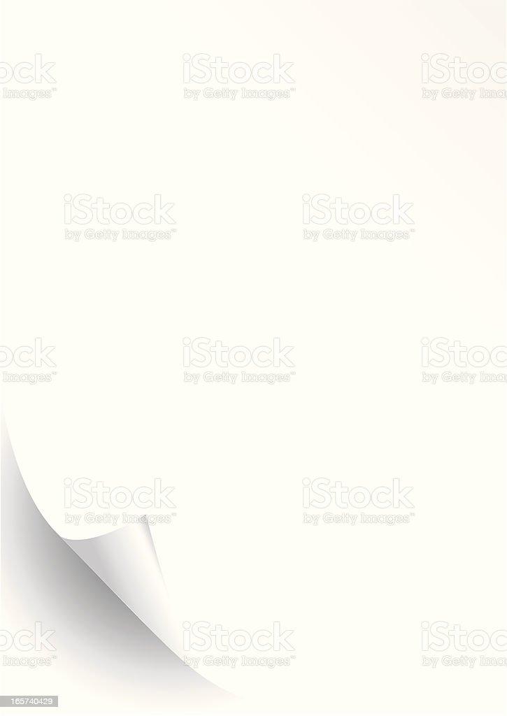 Blank sheet of paper curled up on bottom corner vector art illustration