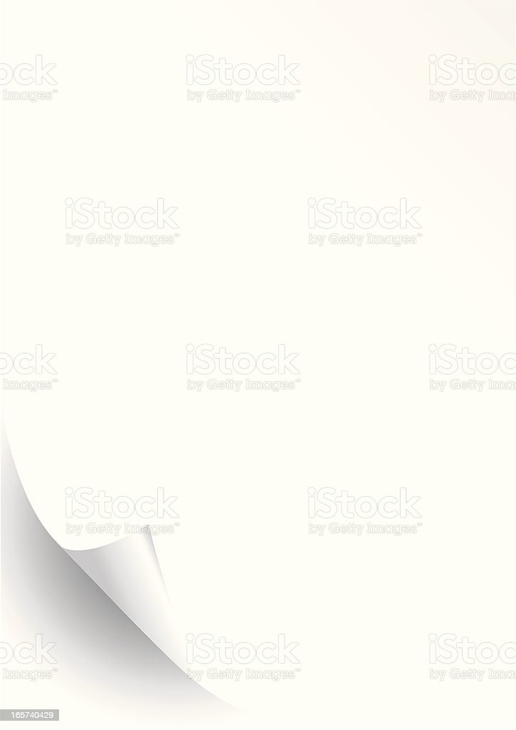 Blank sheet of paper curled up on bottom corner vector art illustration