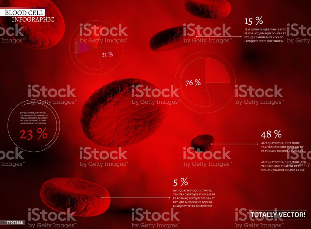 Blood Cell infographic vector art illustration