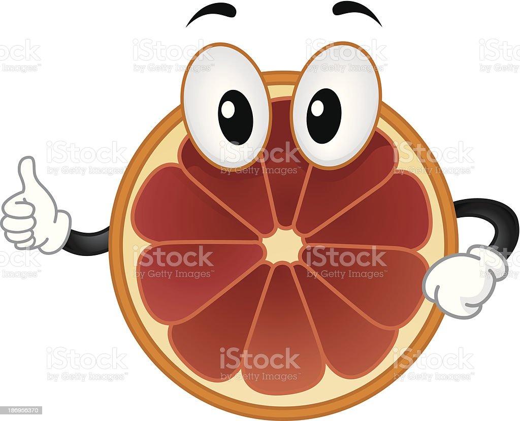 Blood Orange Mascot royalty-free stock vector art