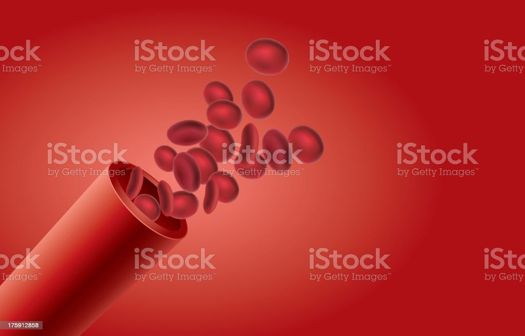 Blood Vessel vector art illustration