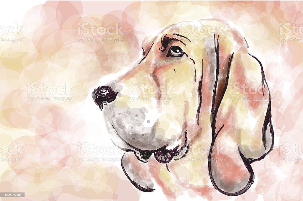 Bloodhaund dog aquarelle painting imitation vector art illustration