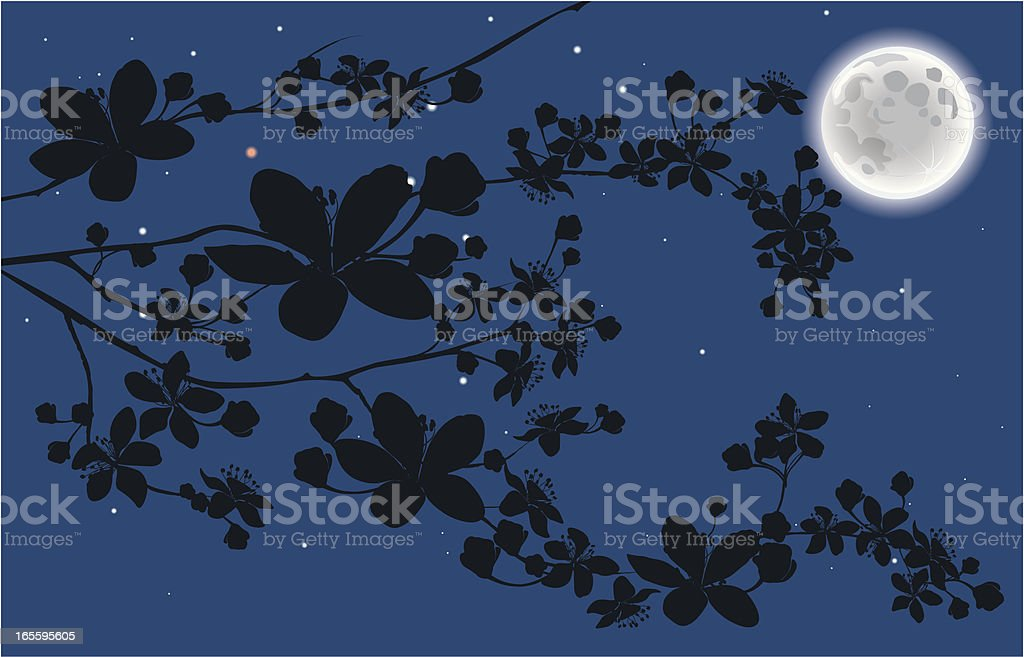 Blooming branch at night royalty-free stock vector art