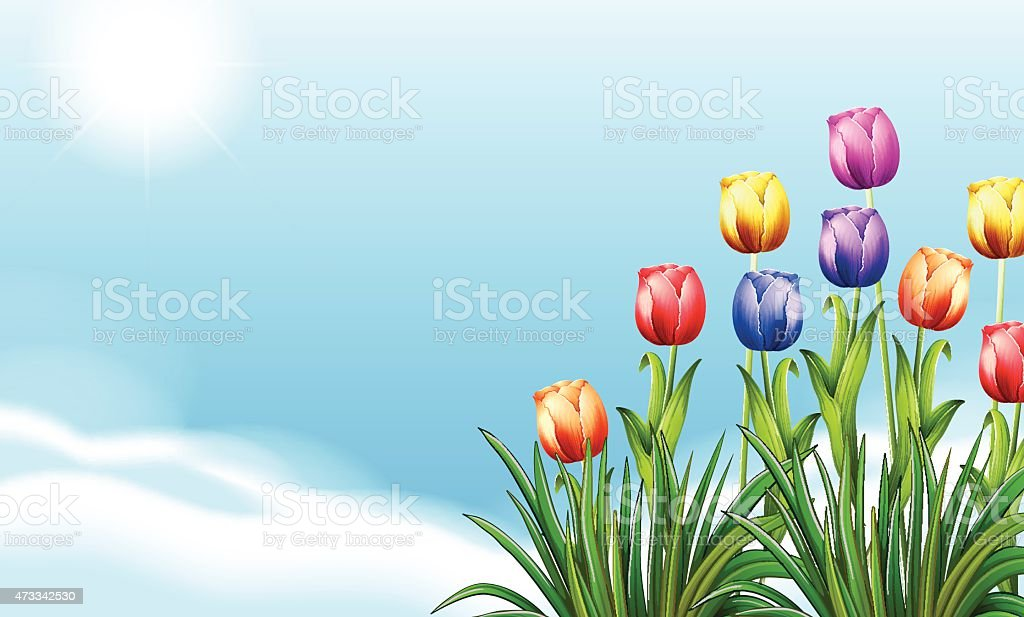 Blooming flowers vector art illustration