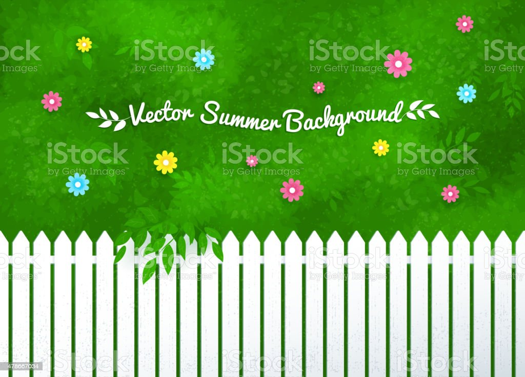 Blooming shrubs and white fence. vector art illustration