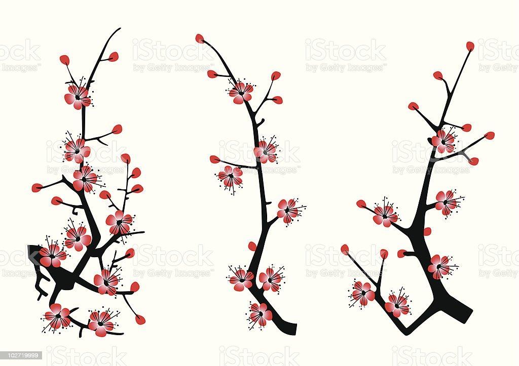 blossom cherry royalty-free stock vector art