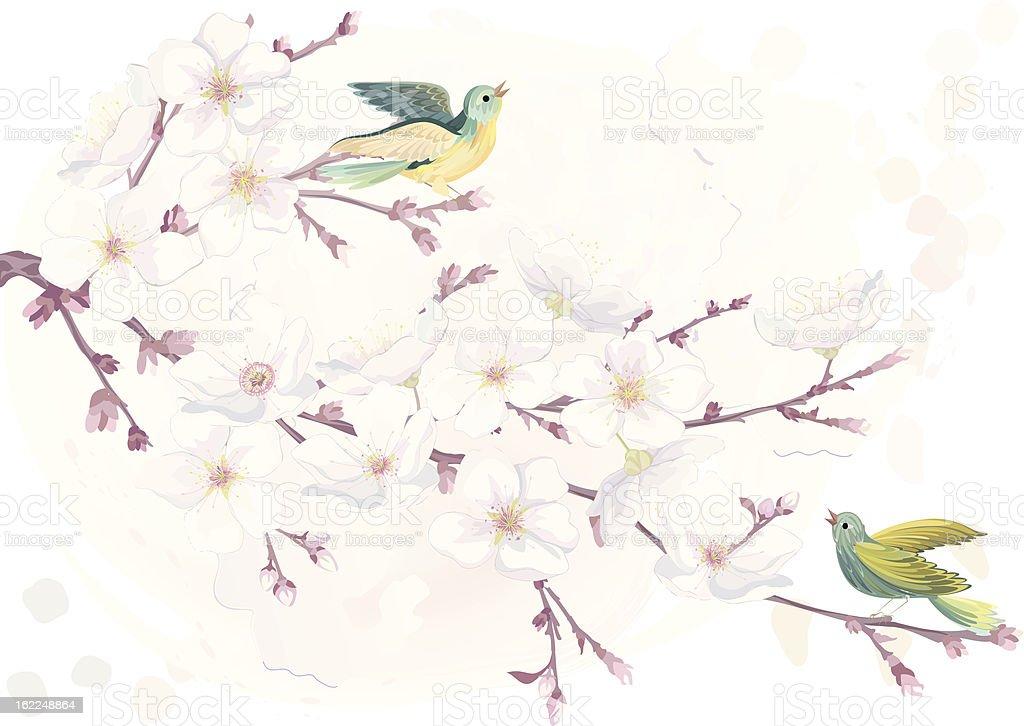 Blossoming cherry tree vector art illustration