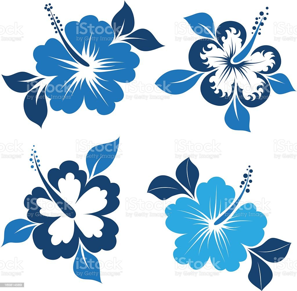 Blue and white themed illustrated hibiscuses vector art illustration