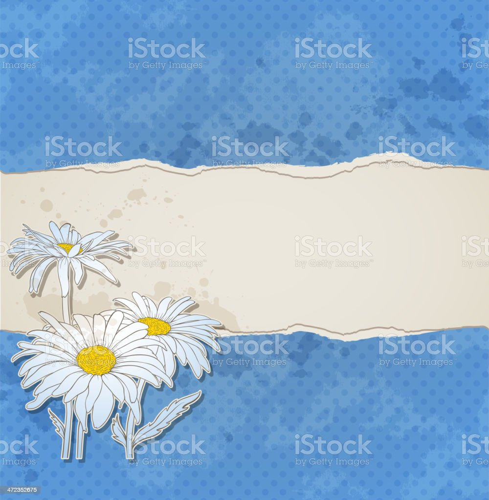 Blue background with chamomiles royalty-free stock vector art