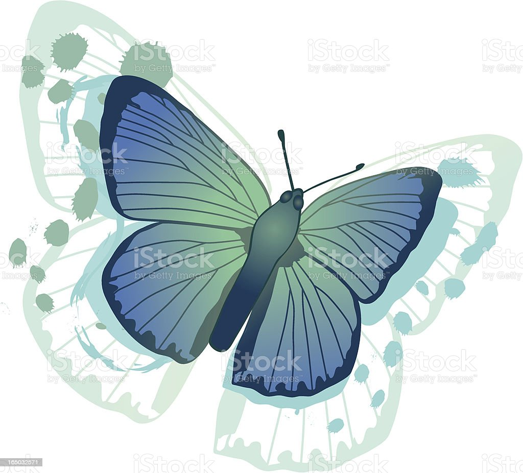 Blue Butterfly royalty-free stock vector art