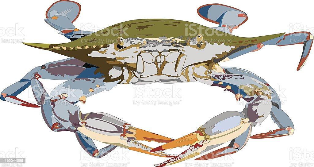 Blue Crab Illustration royalty-free stock vector art