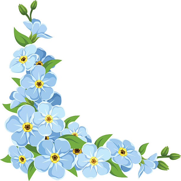 clip art forget me not flower - photo #28