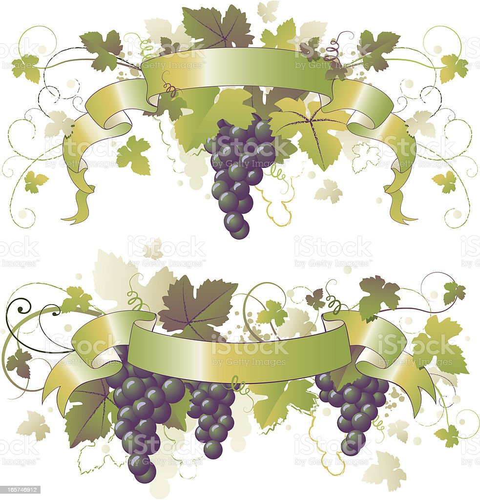 Blue Grape Grapevine Ribbons royalty-free stock vector art