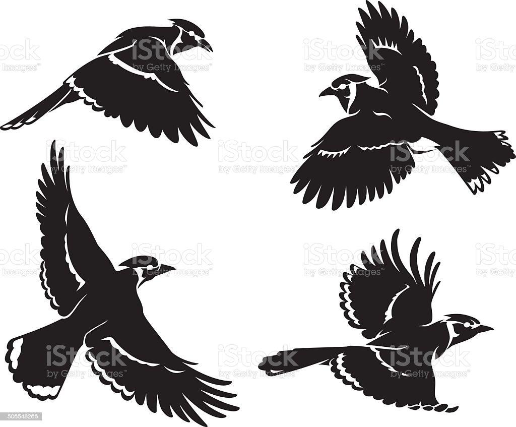 Blue Jay Bird Set Silhouette vector art illustration