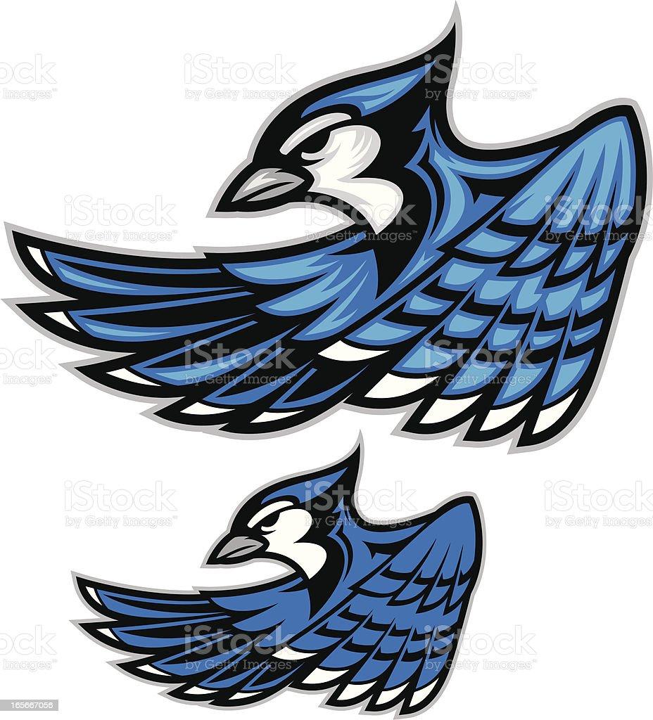 Blue Jay III vector art illustration