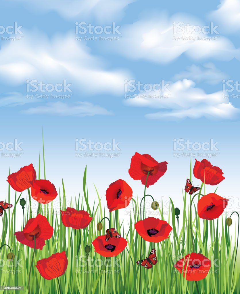 Blue sky background with meadow flowers vector art illustration