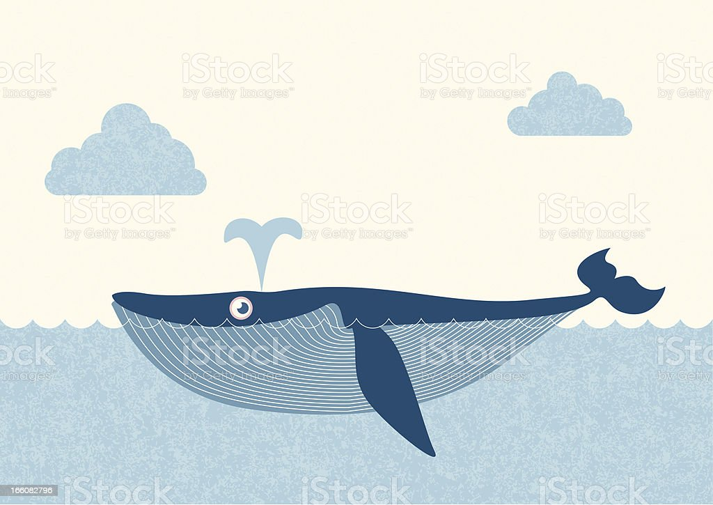 blue whale royalty-free stock vector art