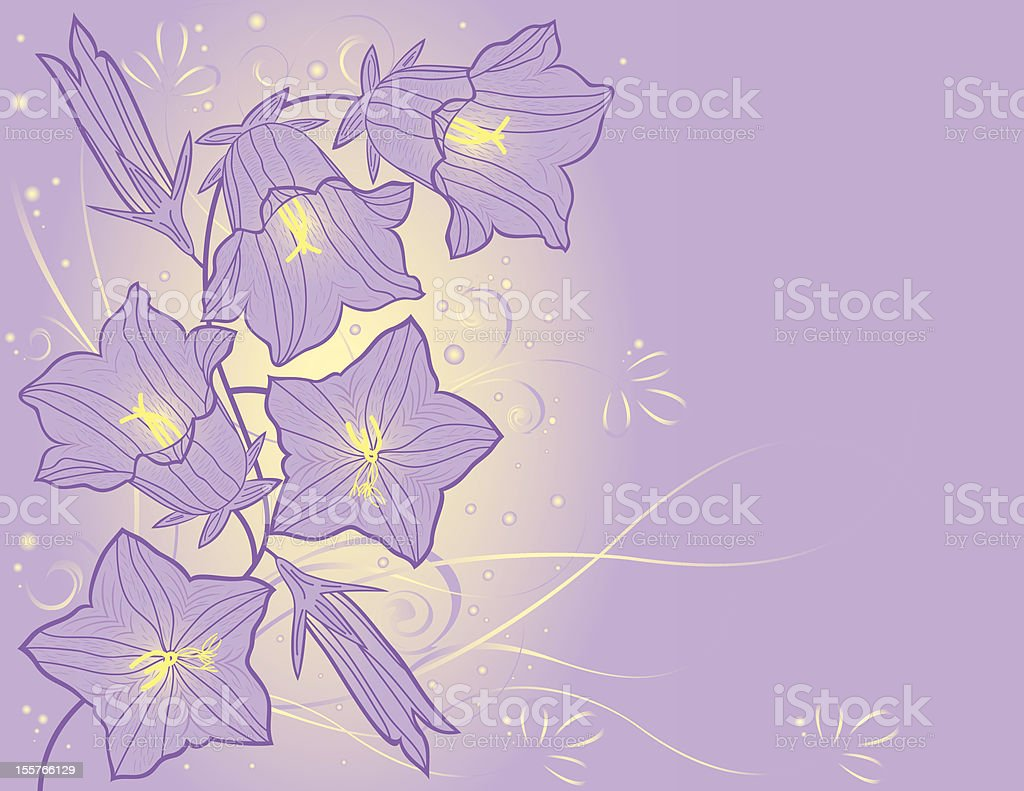 bluebell flowers royalty-free stock vector art