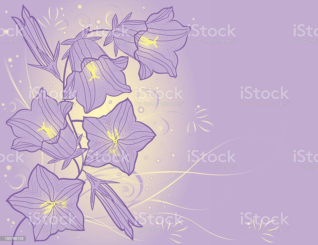 bluebell flowers vector art illustration