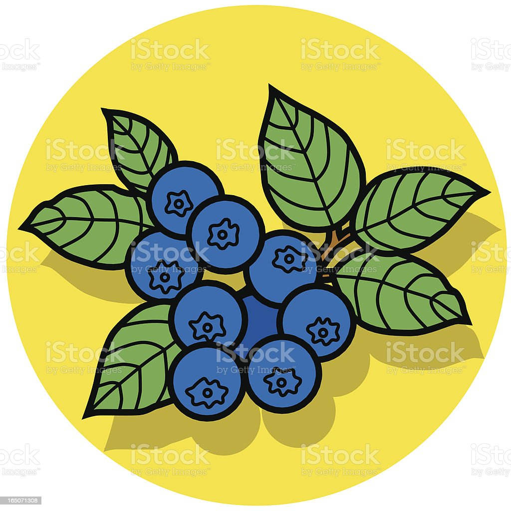 blueberries icon royalty-free stock vector art
