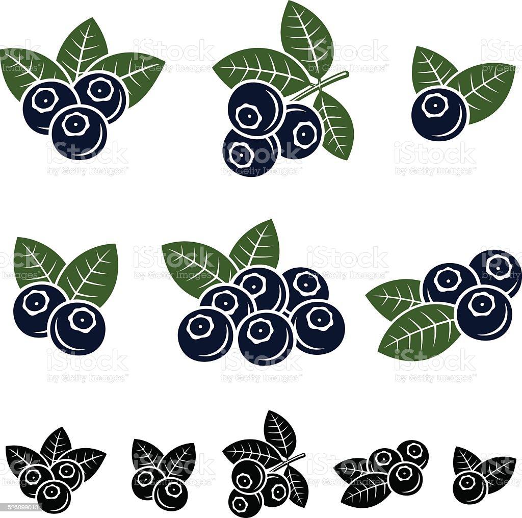 Blueberries set. Vector vector art illustration