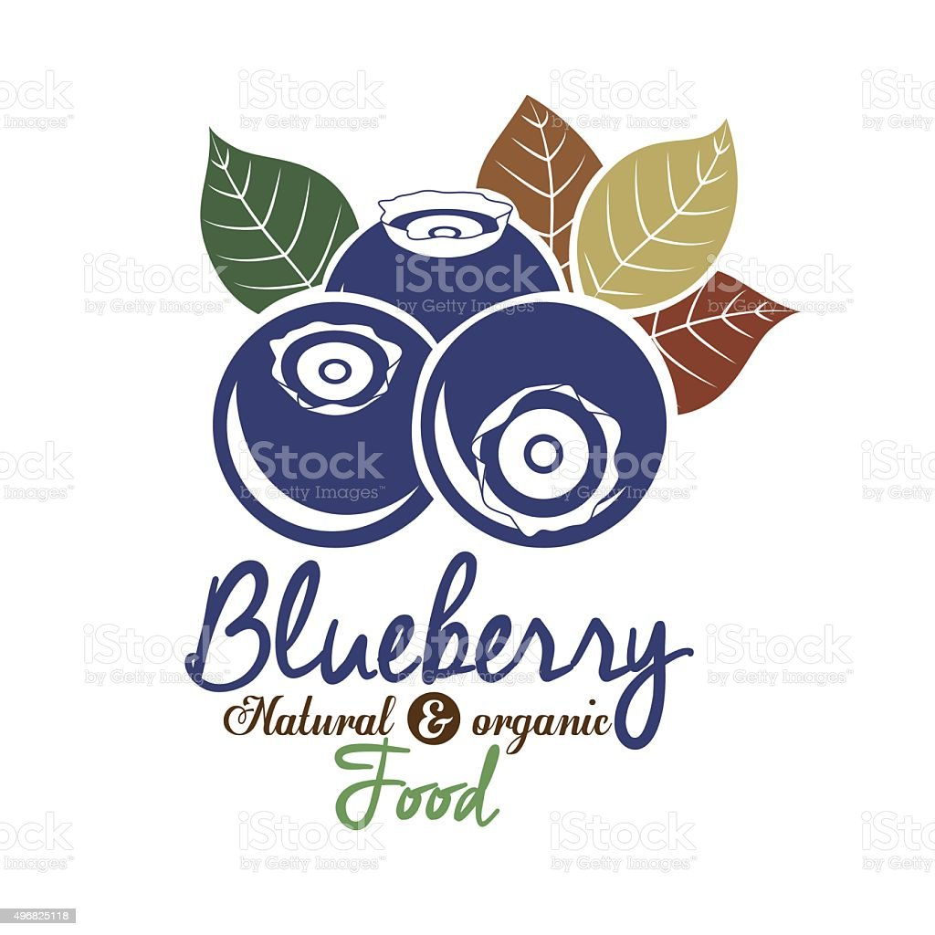 Blueberry design vector art illustration