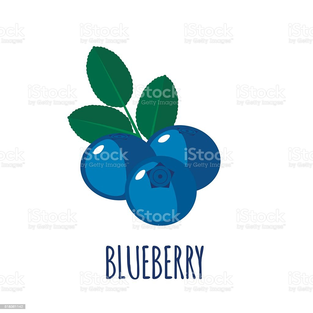 Blueberry icon in flat style on white background vector art illustration