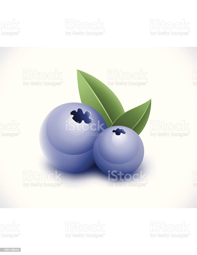 Blueberry royalty-free stock vector art