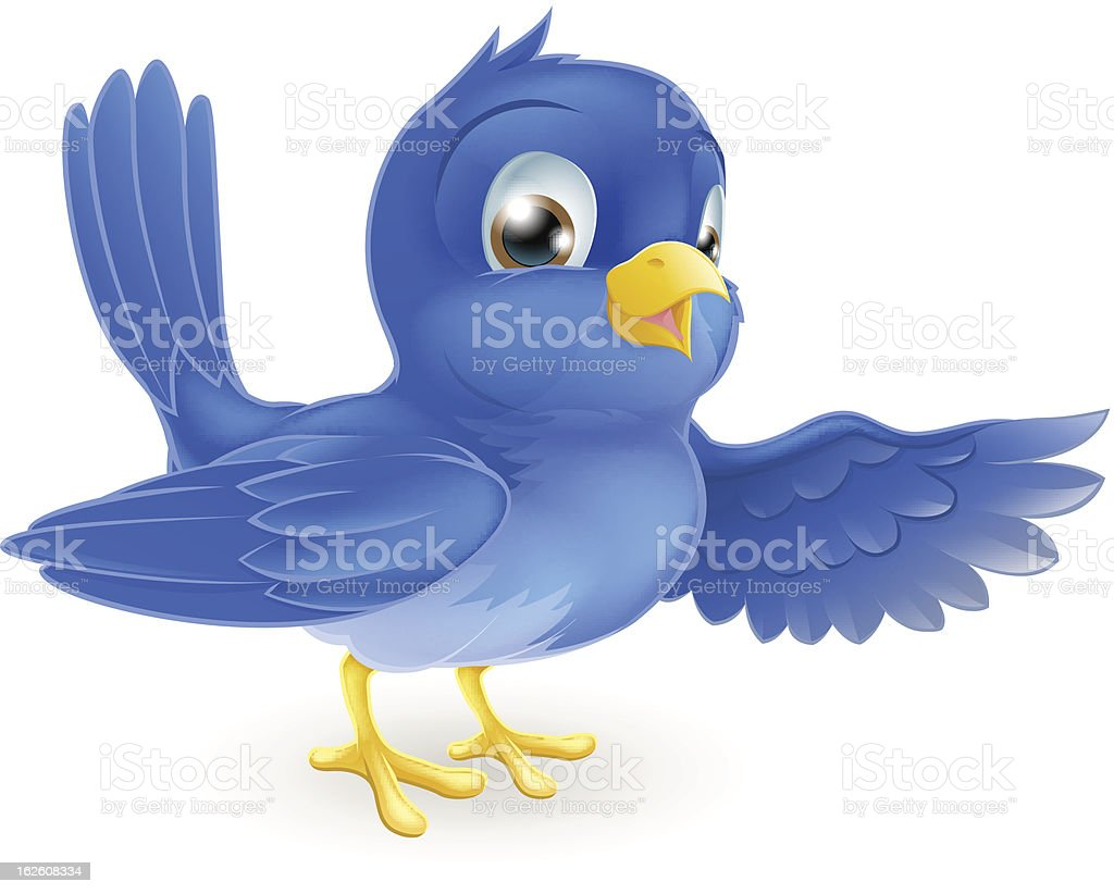 Bluebird pointing vector art illustration