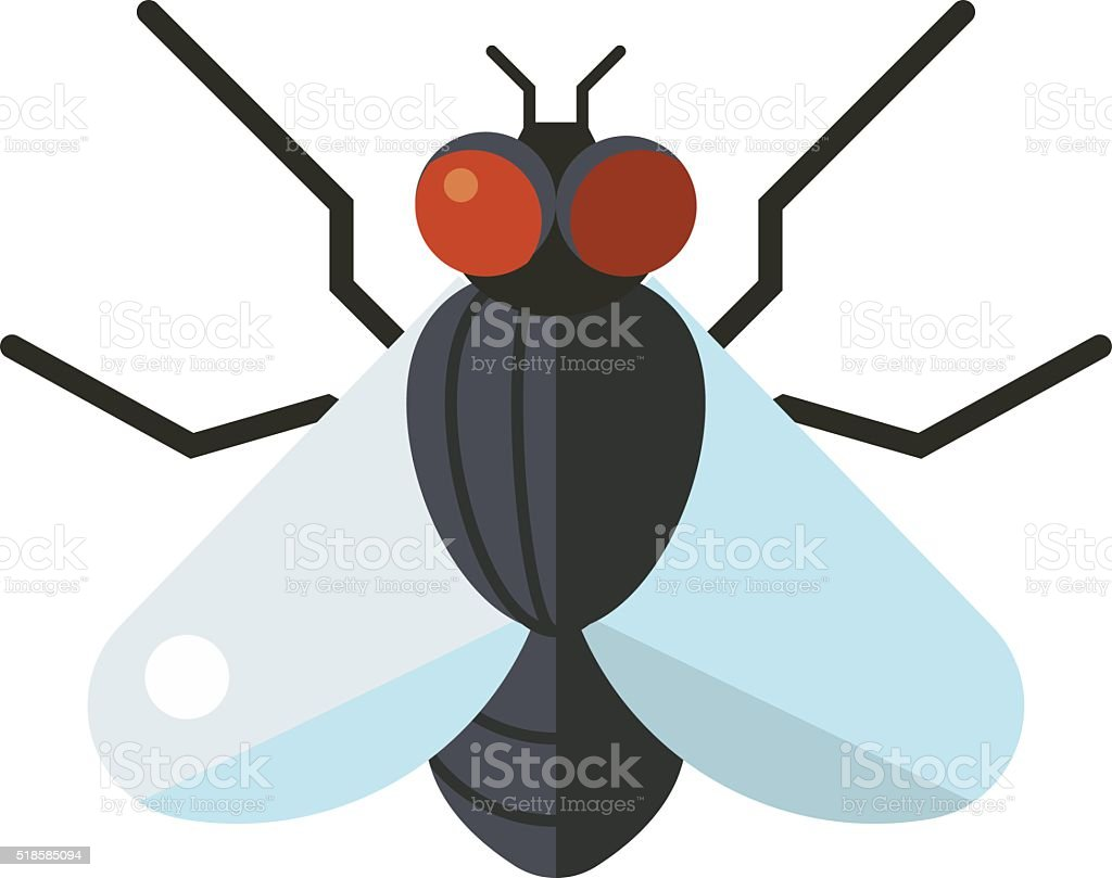 Bluebottle fly insect species calliphora vomitoria bug animal nature macro vector art illustration
