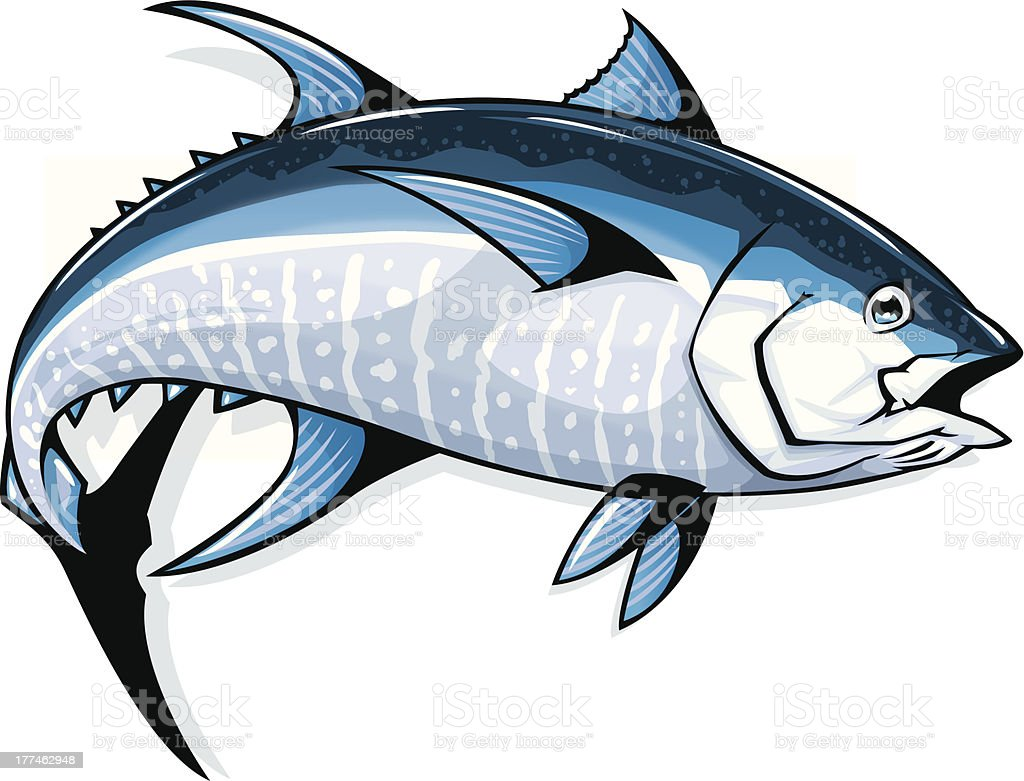 bluefin tuna vector art illustration