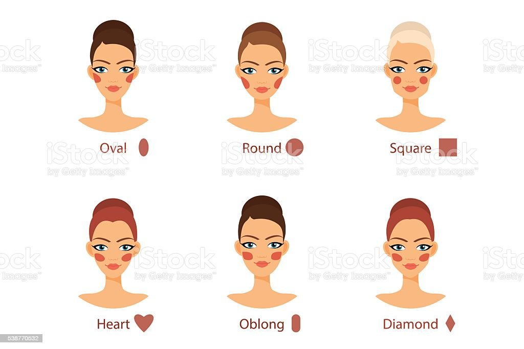 Blush for every woman face shape vector art illustration