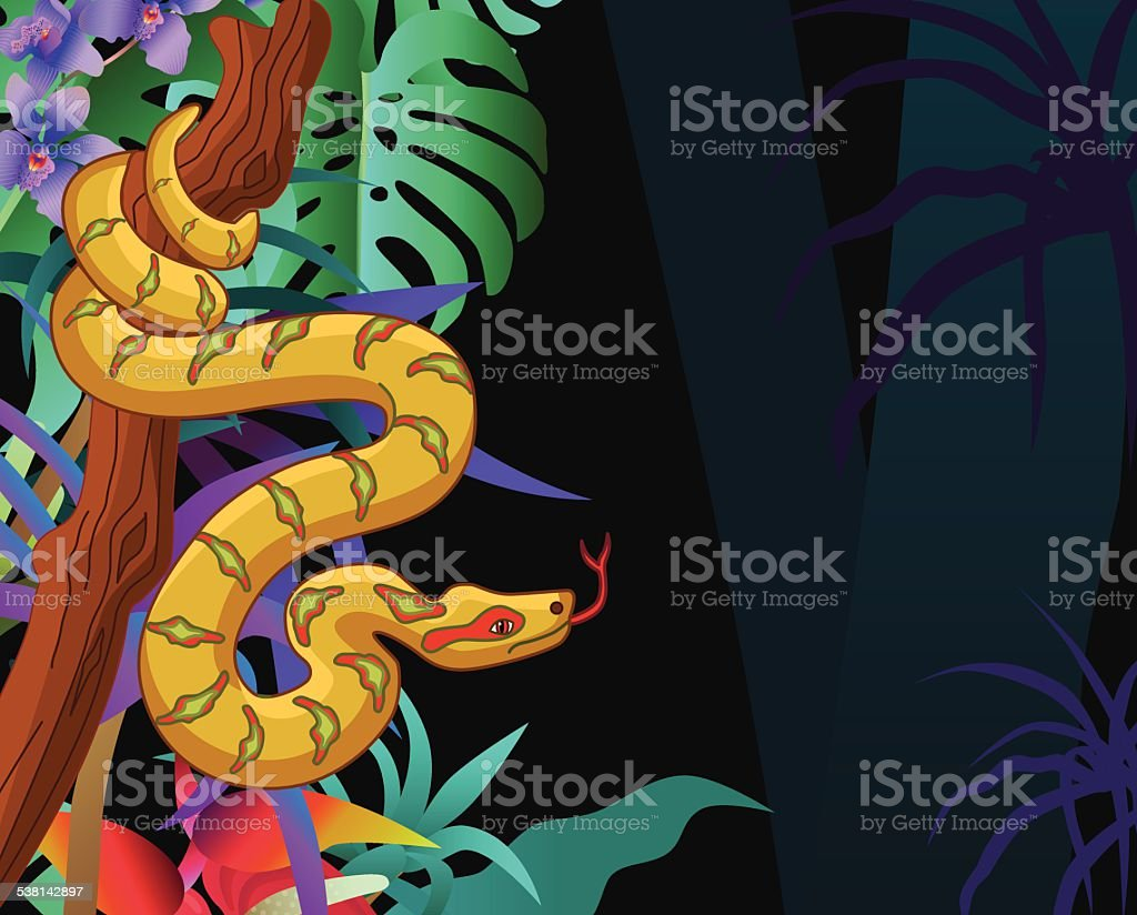 boa constrictor in the Amazon rainforest jungle horizontal vector art illustration