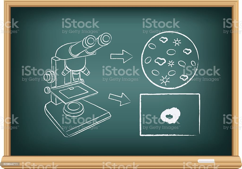 board blood under a microscope vector art illustration