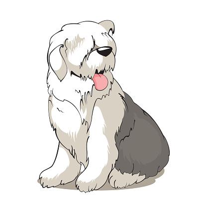 Old English Sheepdog Clip Art, Vector Images & Illustrations - iStock