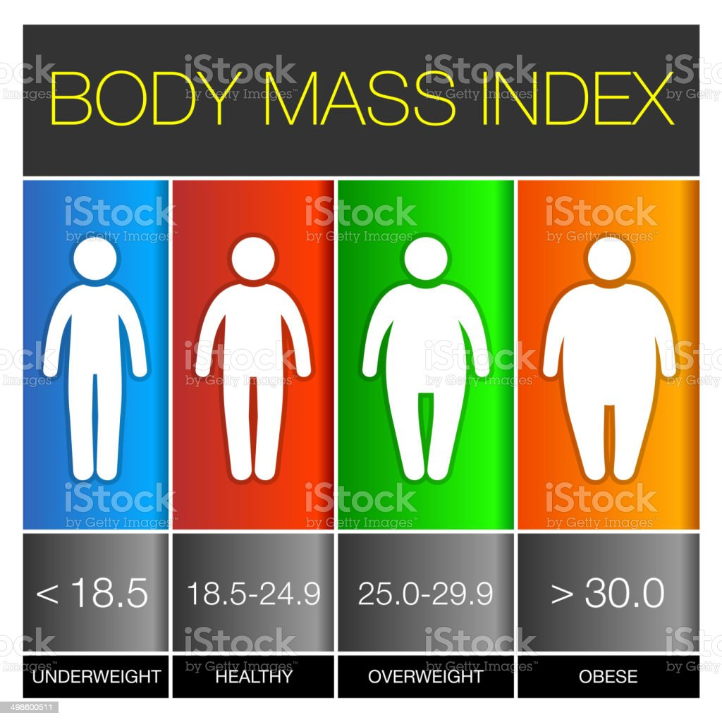 Body Mass Index Infographic Icons. Vector royalty-free stock vector art