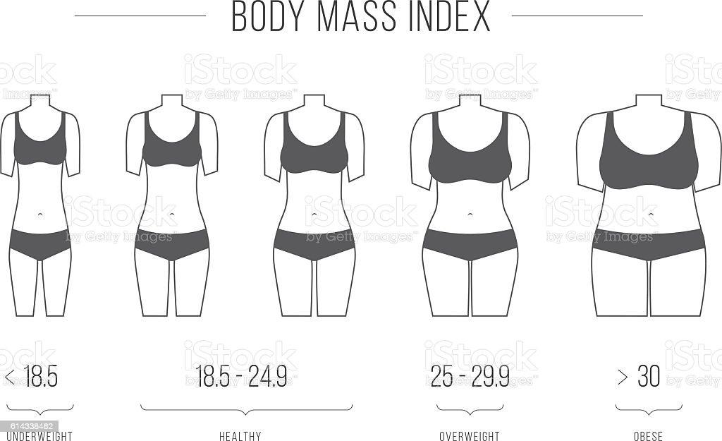 Body Mass Index vector illustration,female figure vector art illustration