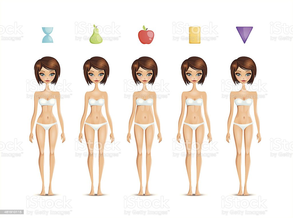 Body shapes vector art illustration