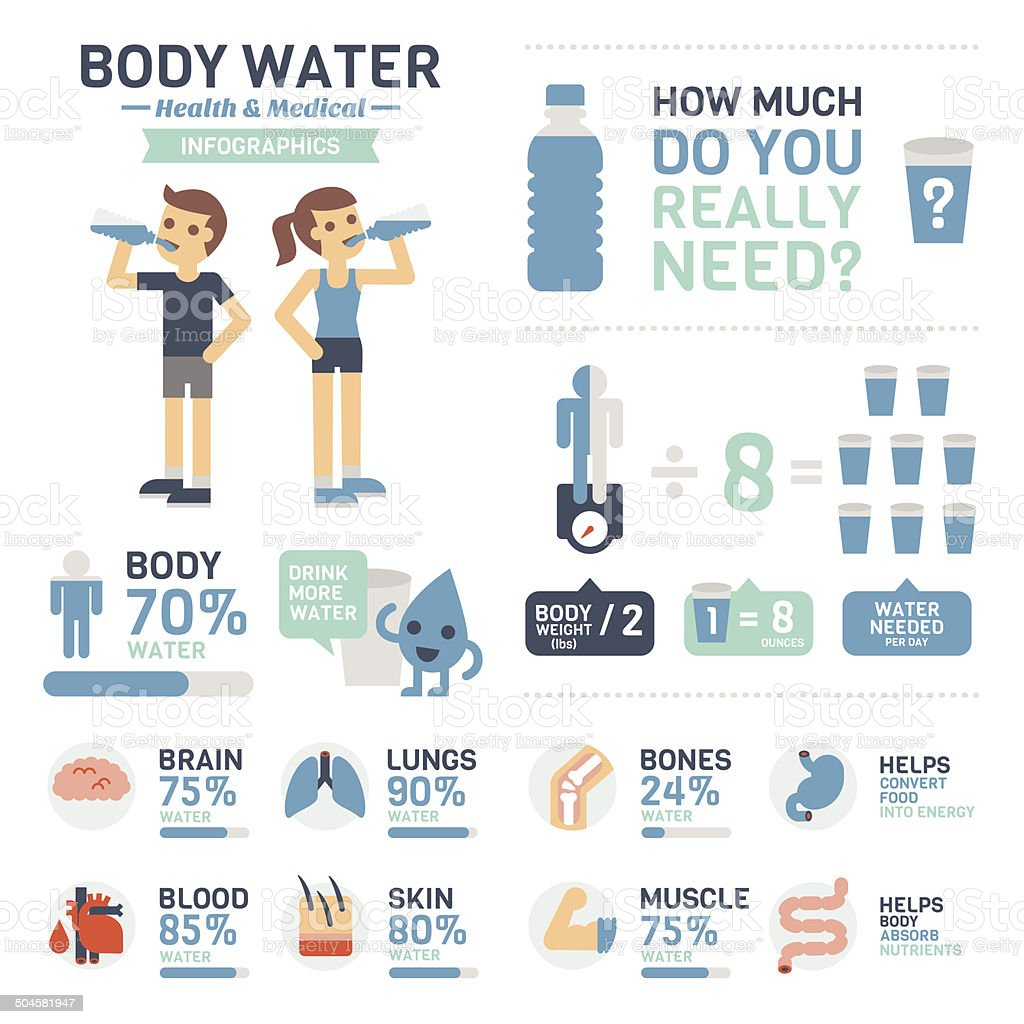 Body Water Infographics vector art illustration