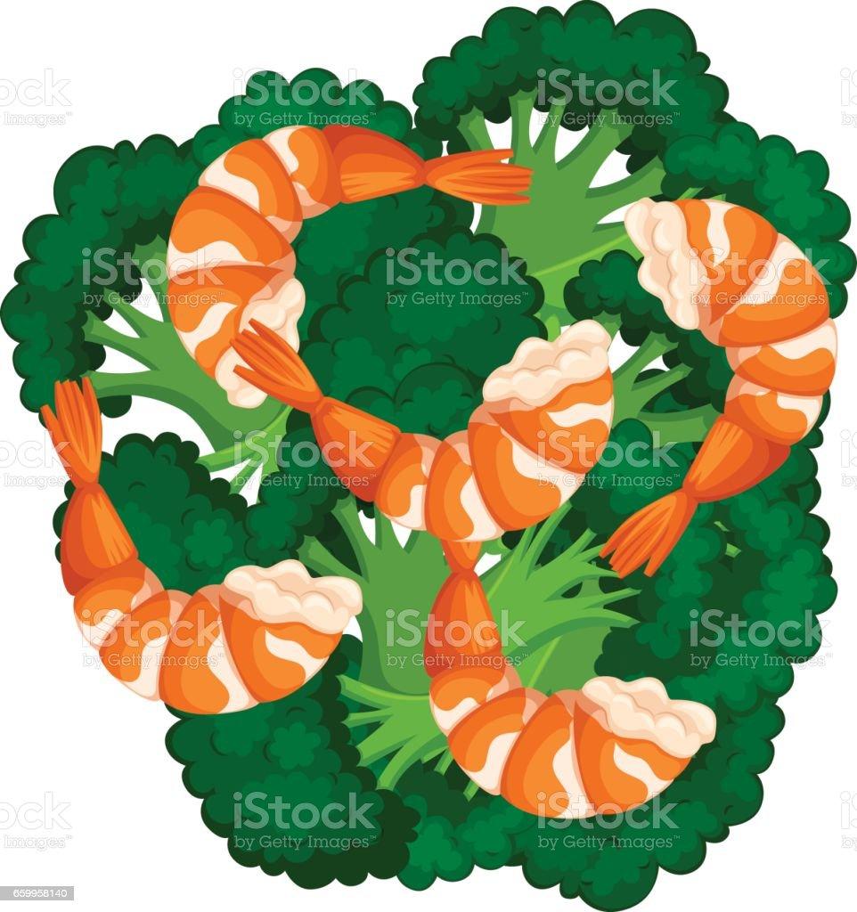 Boiled brocolli and shrimps vector art illustration