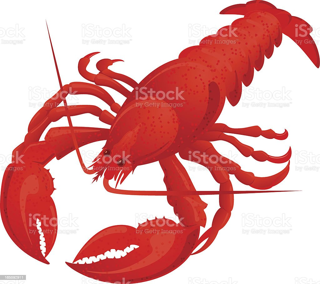 Boiled lobster royalty-free stock vector art