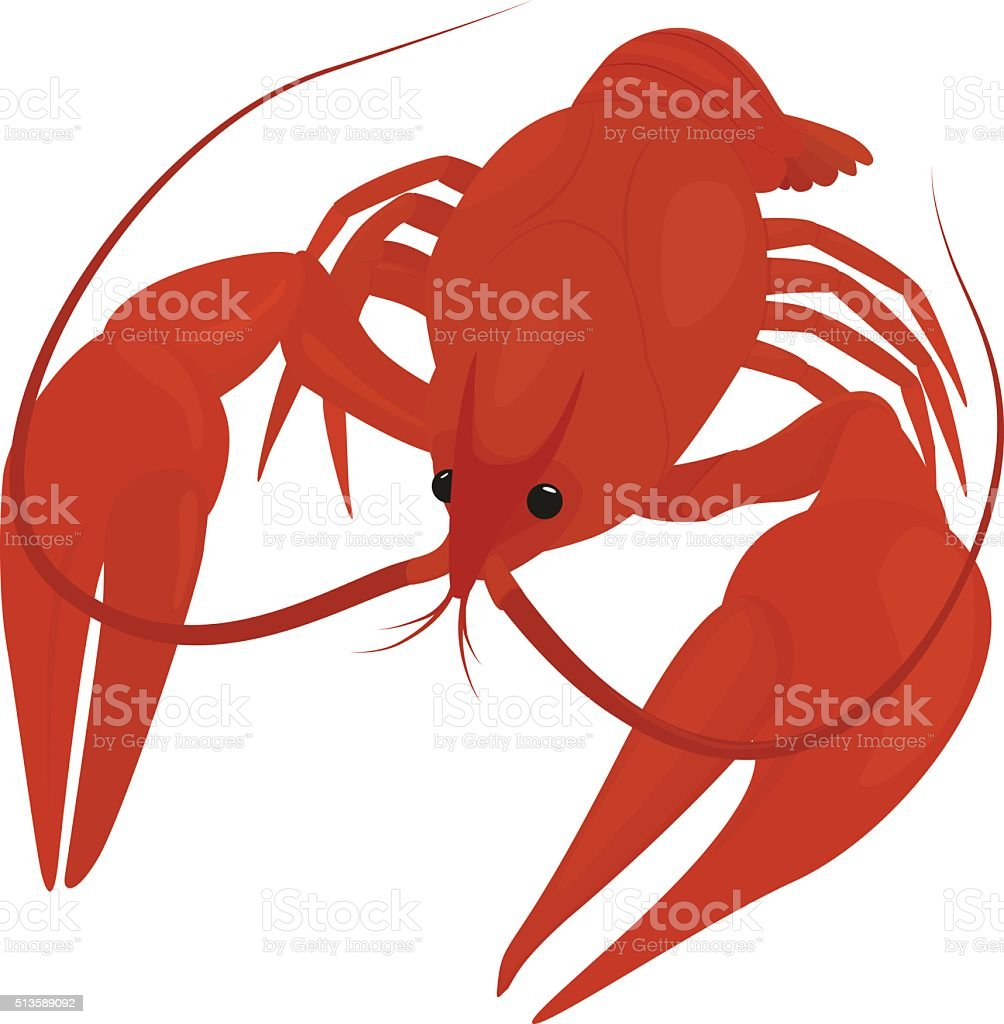 boiled red crayfish, crawfish vector art illustration