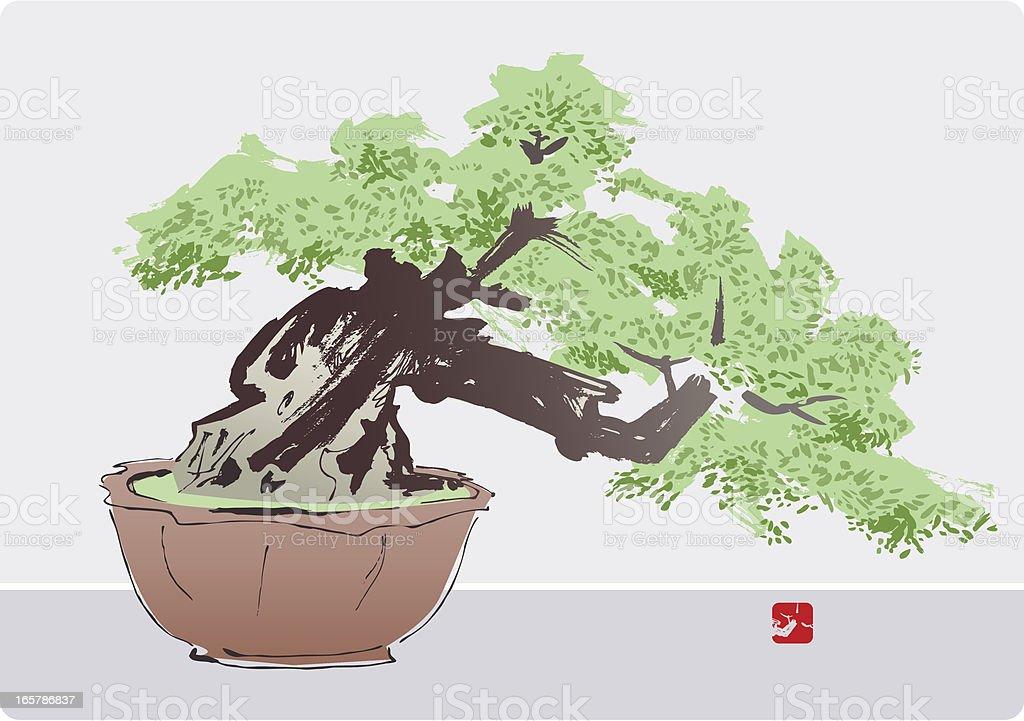 Bonsai Tree royalty-free stock vector art
