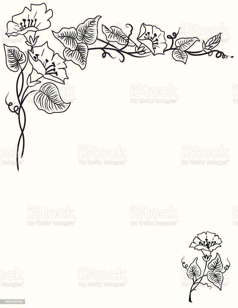 Border - Floral royalty-free stock vector art